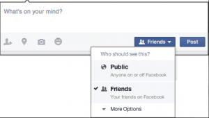 Figure 3. Post Visibility Options in Facebook